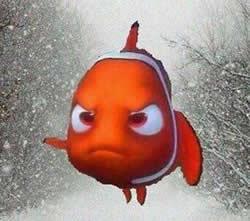 Water Testing NY Storm Nemo